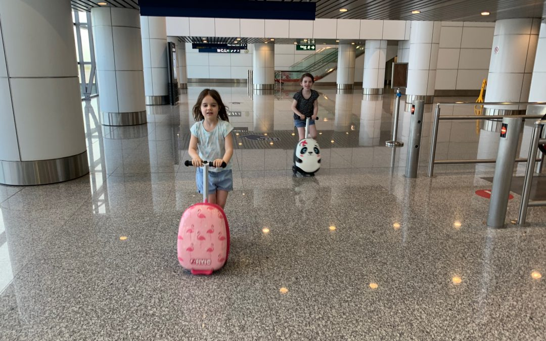 Zinc Flyte Scooter Suitcase Review